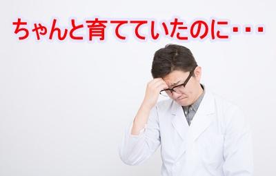 OZP73_komattasensei20140321500